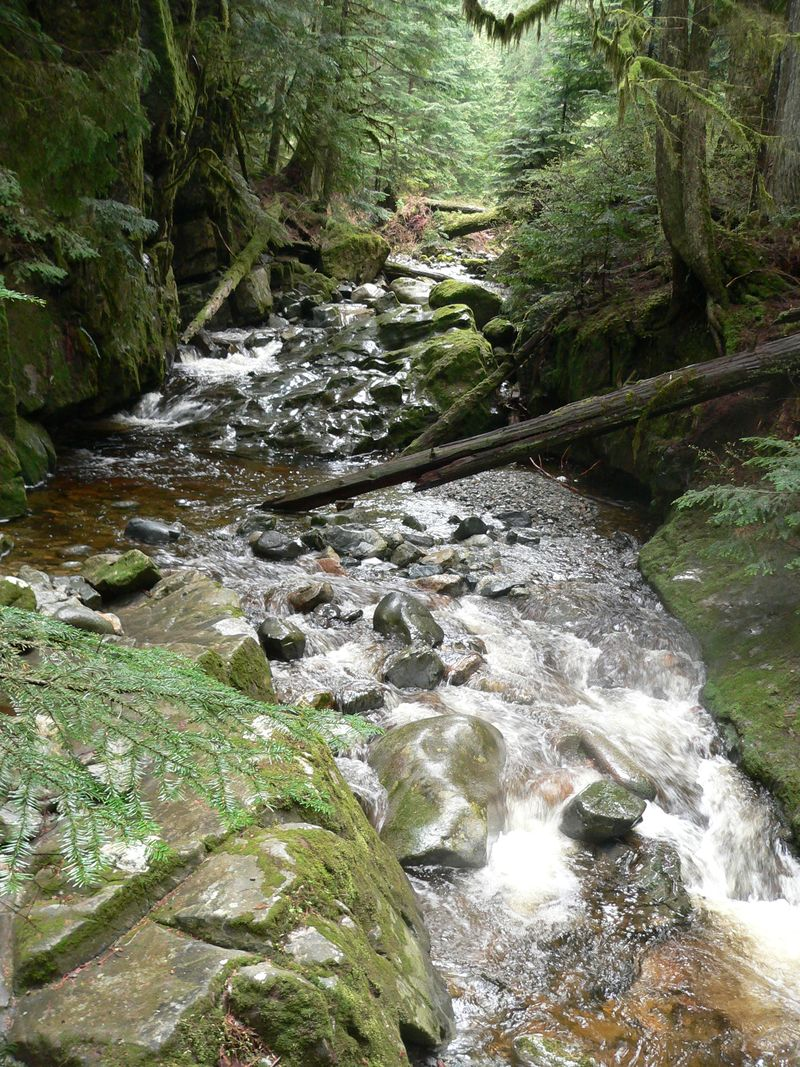 Brothers Creek 027