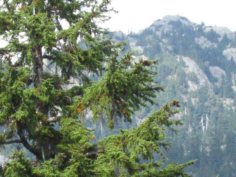 Dinkey peak 033